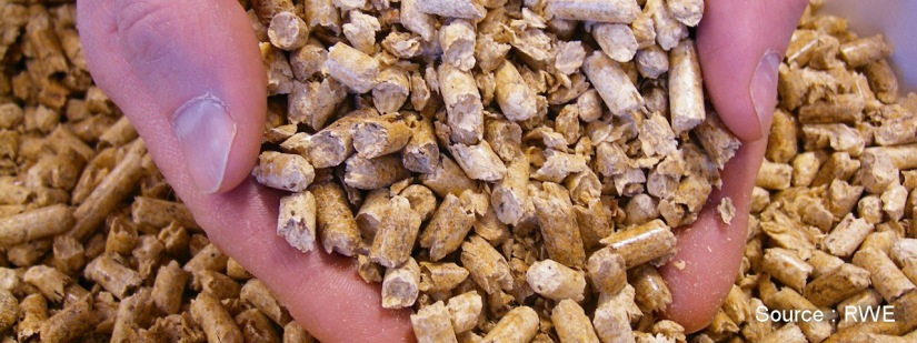 biomasse-1
